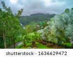 danang  vietnam   january 01...   Shutterstock . vector #1636629472