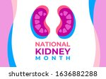 the national kidney month... | Shutterstock .eps vector #1636882288