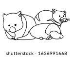animals of australia on white... | Shutterstock .eps vector #1636991668