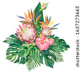 bouquet with tropical... | Shutterstock . vector #1637273665