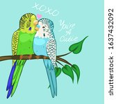 Greeting Card With Budgies In...