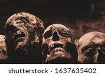 Skulls. Group Of Mummified...