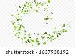 mint foliage vector concept.... | Shutterstock .eps vector #1637938192