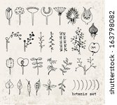 hand drawn botanical set  | Shutterstock .eps vector #163798082
