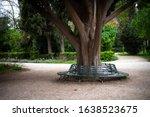 Athens  Greece  National Garden ...