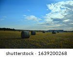 Dried Hays At The Open Field Of ...