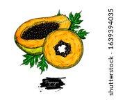papaya vector drawing. hand... | Shutterstock .eps vector #1639394035