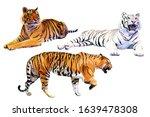 set of realistic white and... | Shutterstock .eps vector #1639478308