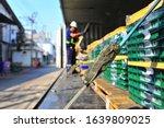 Pallets Load Of Green Plastics...