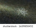 Twin Snowflakes On A Woolen...