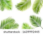 concept texture leaves abstract ... | Shutterstock . vector #1639992445