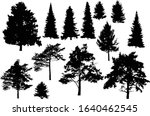 illustration with evergreen... | Shutterstock .eps vector #1640462545