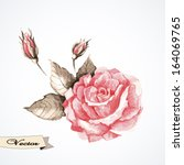 vector rose watercolor. vector... | Shutterstock .eps vector #164069765