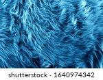 Blue Fur For Background Or...