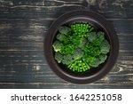 Green Vegetables. Broccoli ...