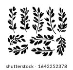plant twigs with leaves black... | Shutterstock .eps vector #1642252378