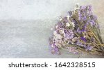 Purple Flowers Are Bloom On The ...