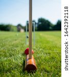 Small photo of Taking aim during croquet match