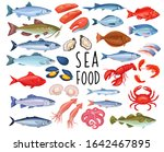 seafood and fish icons. lobster ... | Shutterstock .eps vector #1642467895