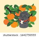 hand drawn illustration on the...   Shutterstock .eps vector #1642750555