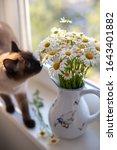 Bouquet Of Camomile In Ceramic...