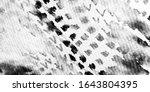 Silver Snake Pattern. Metal...