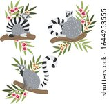 Lemur Hand Drawn Vector...
