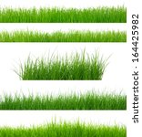 set of green grass isolated on ... | Shutterstock . vector #164425982