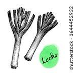 leeks. ink sketch isolated on... | Shutterstock .eps vector #1644452932