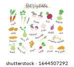 root vegetables hand drawn...   Shutterstock .eps vector #1644507292