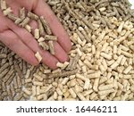 hand and wood pellet - stock photo