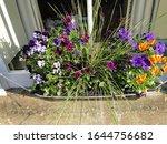 Flower Baskets On The Window...