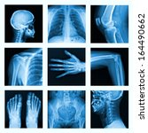 collage of many x rays. very... | Shutterstock . vector #164490662