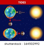 tides depend where the sun and... | Shutterstock .eps vector #164502992