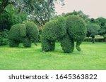 Cute Elephants Family Shaped...