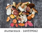 A Bunch Of Autumn Edible...