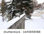 typical canadian suburb...   Shutterstock . vector #1645858588