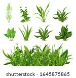 green realistic spring grass.... | Shutterstock .eps vector #1645875865