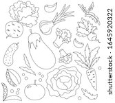 collection of hand drawn...   Shutterstock .eps vector #1645920322