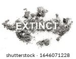 Small photo of Extinct word written in ash, dust or dirt as animal species or nature destruction, pollution, annihilation coused by human poaching, global warming, ecology crime
