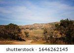 Southern California Oak...