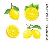 lemon fruits vector... | Shutterstock .eps vector #1646503405