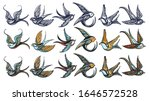 swallows birds collection. old... | Shutterstock .eps vector #1646572528