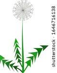 dandelion vector. unusual... | Shutterstock .eps vector #1646716138