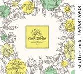 Background With Gardenia ...