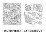 Seashell Pattern  Art...
