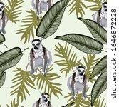 grey vector lemur with exotic... | Shutterstock .eps vector #1646872228