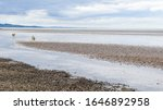 A View From Cramond Island Of...