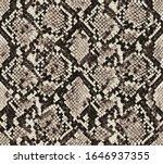 snake skin pattern design ... | Shutterstock .eps vector #1646937355