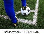 kicking the soccer ball | Shutterstock . vector #164713682
